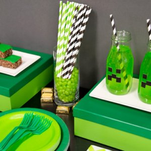 Minecraft Party Party Supplies